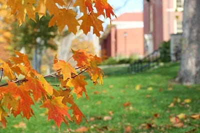 sustainability ideas for college campuses