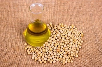 soybean-based products